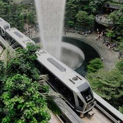 electric train going through a green space in a city